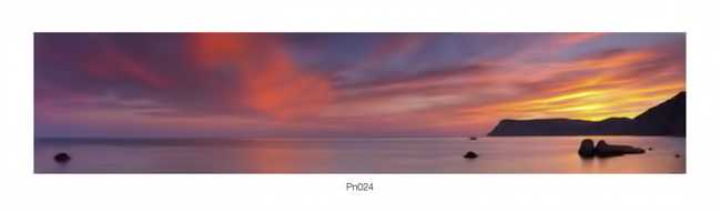 Pn_024