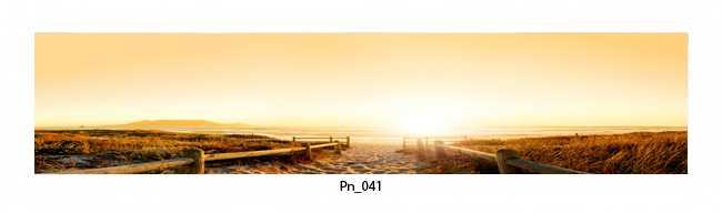 Pn_041