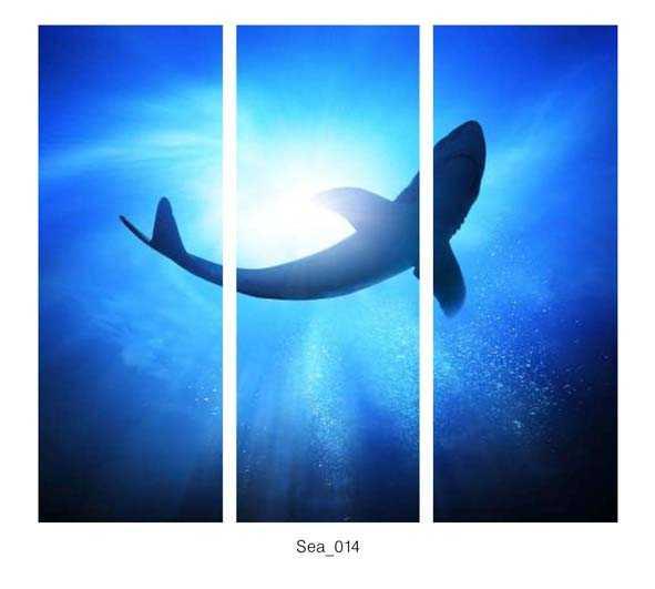Sea_014