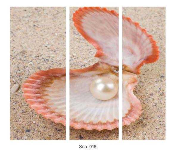 Sea_016