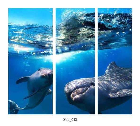 Sea_013