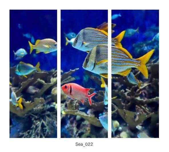 Sea_022