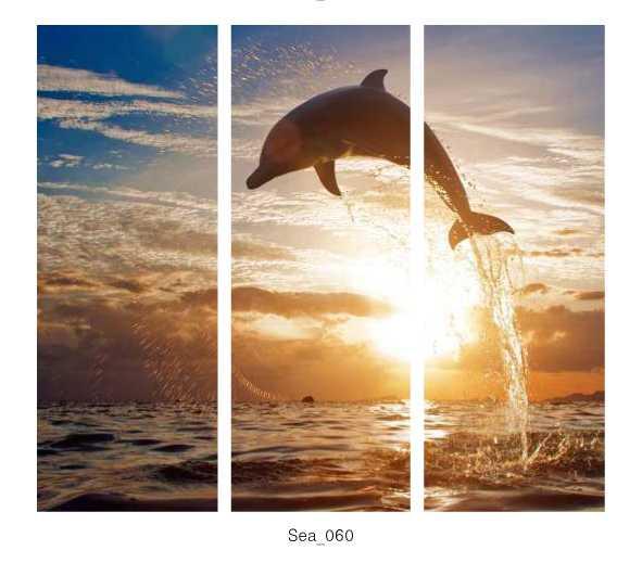 Sea_060