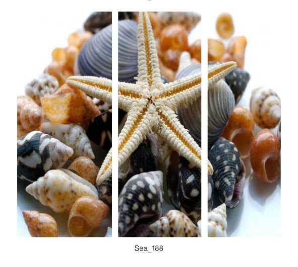 Sea_188