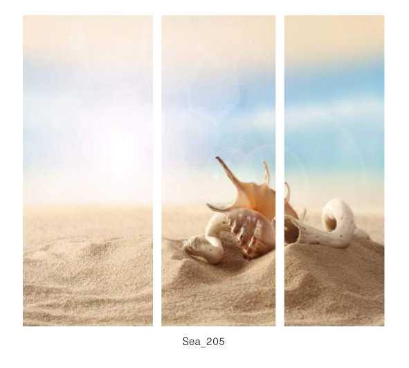 Sea_205