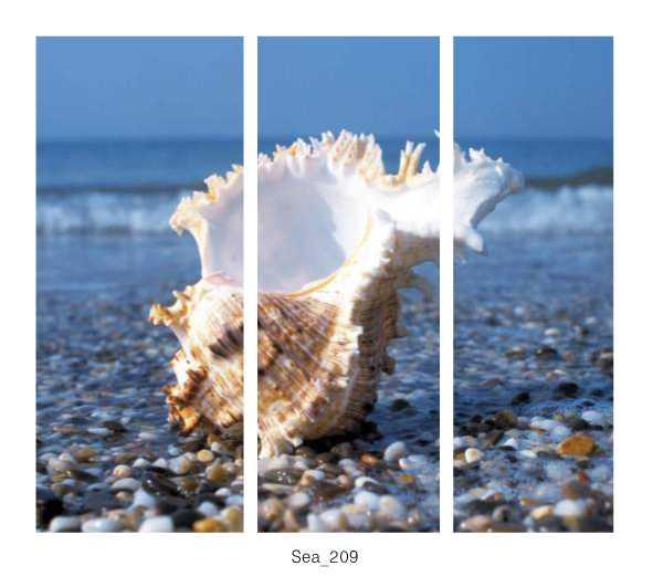 Sea_209